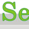 APEX Services India Logo