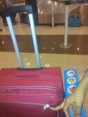 Damage Baggage during my journey from Delhi to Chennai (Booking Reference No. J3LGUB)