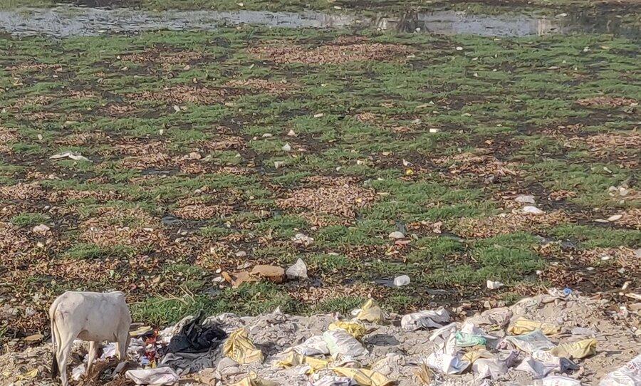 Municipal Corporation Of Faridabad — water supply problems