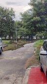 Drainage problem and park maintenance