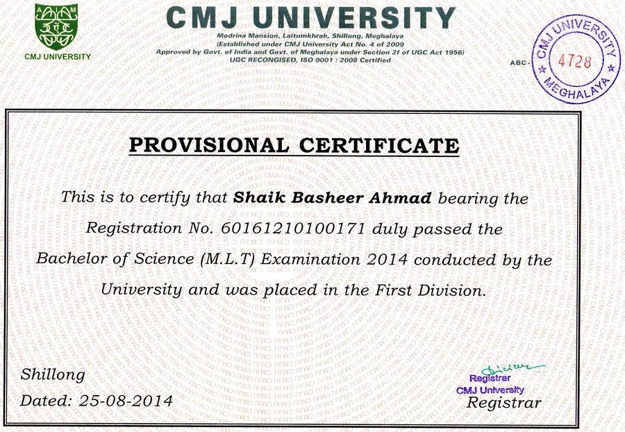 Provisional certificate sample.